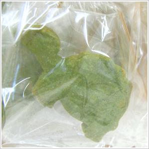 かめのクッキー 150円(税込)