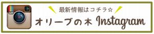 オリーブの木 iInstagram